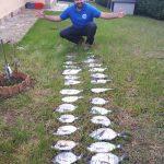 pesca de xargos desde lancha asturias