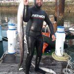 congrio pesca submarina asturias